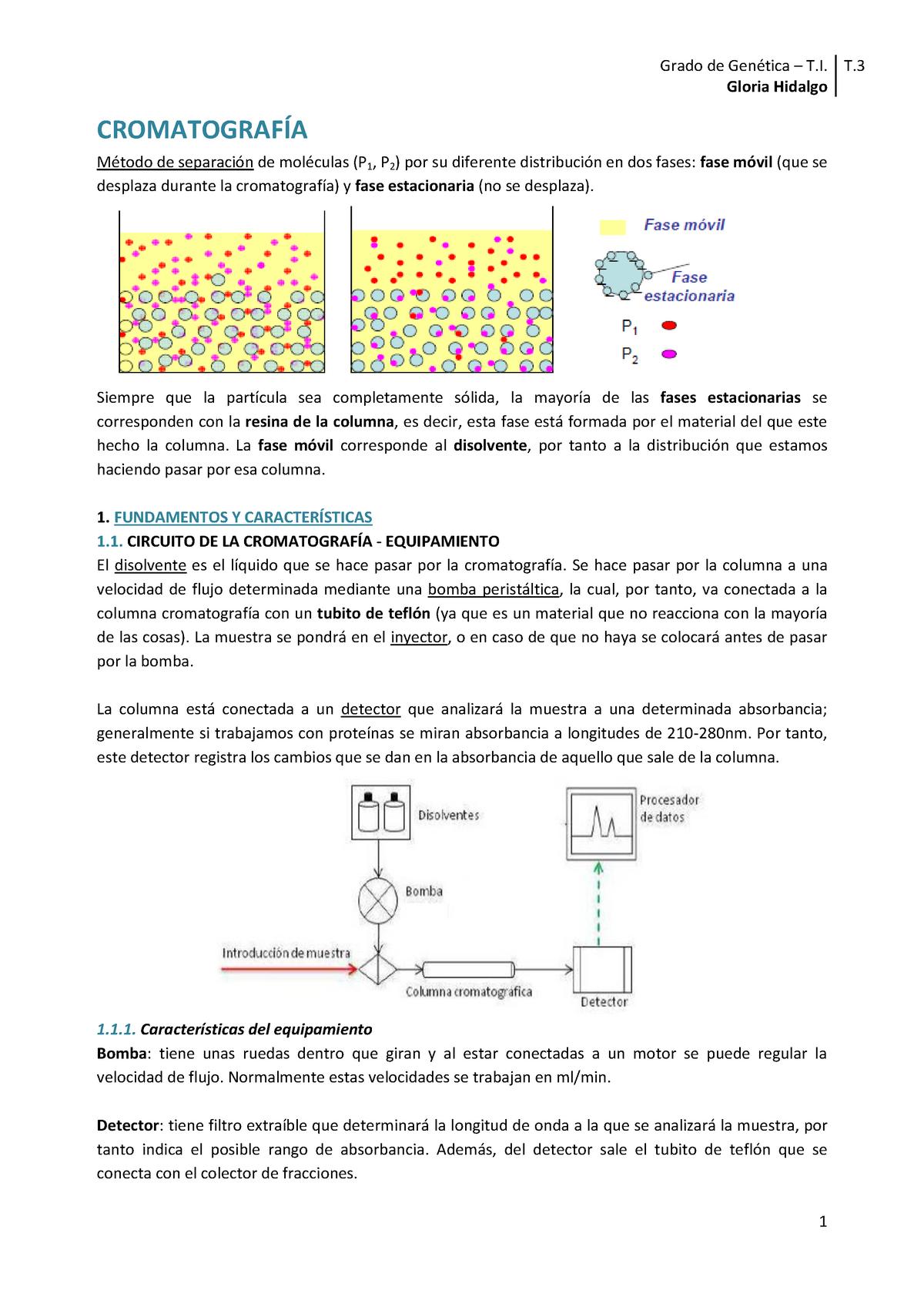 Interacciones hidrofobicas en las protein as en polvo para bajar de peso