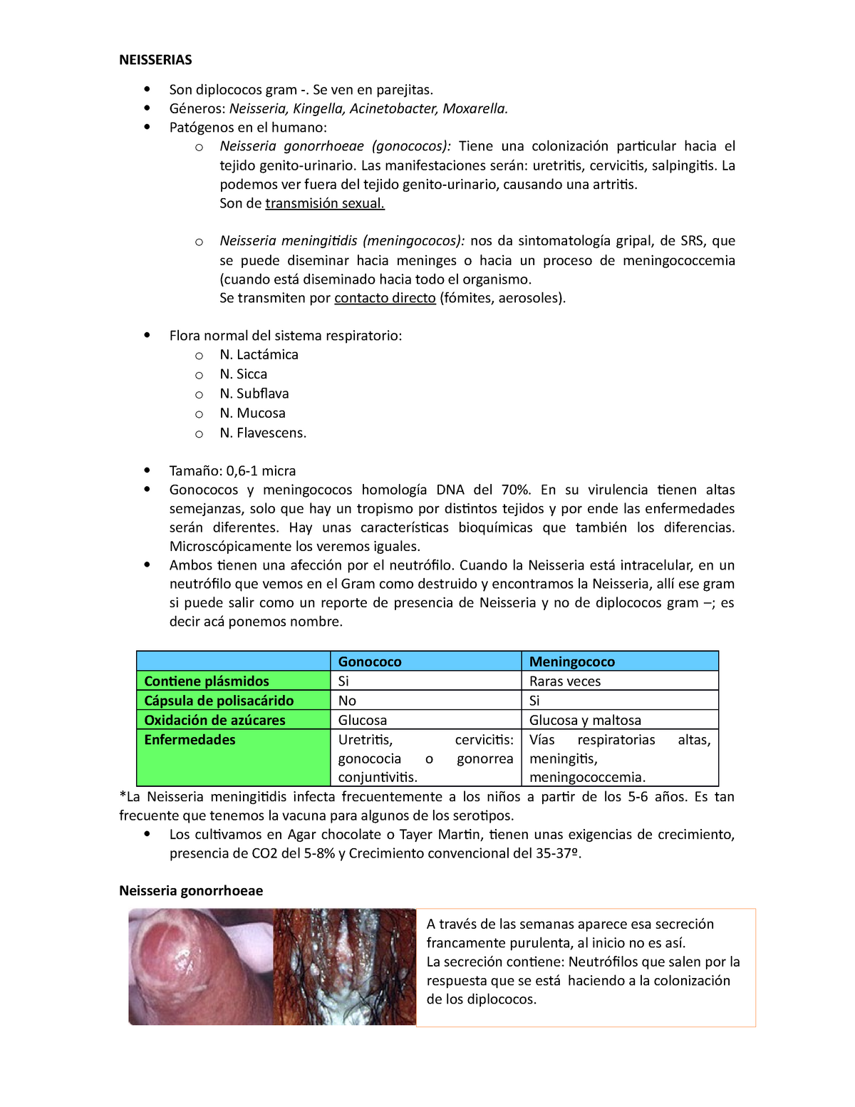 Neisseria gonorrhoeae uretritis