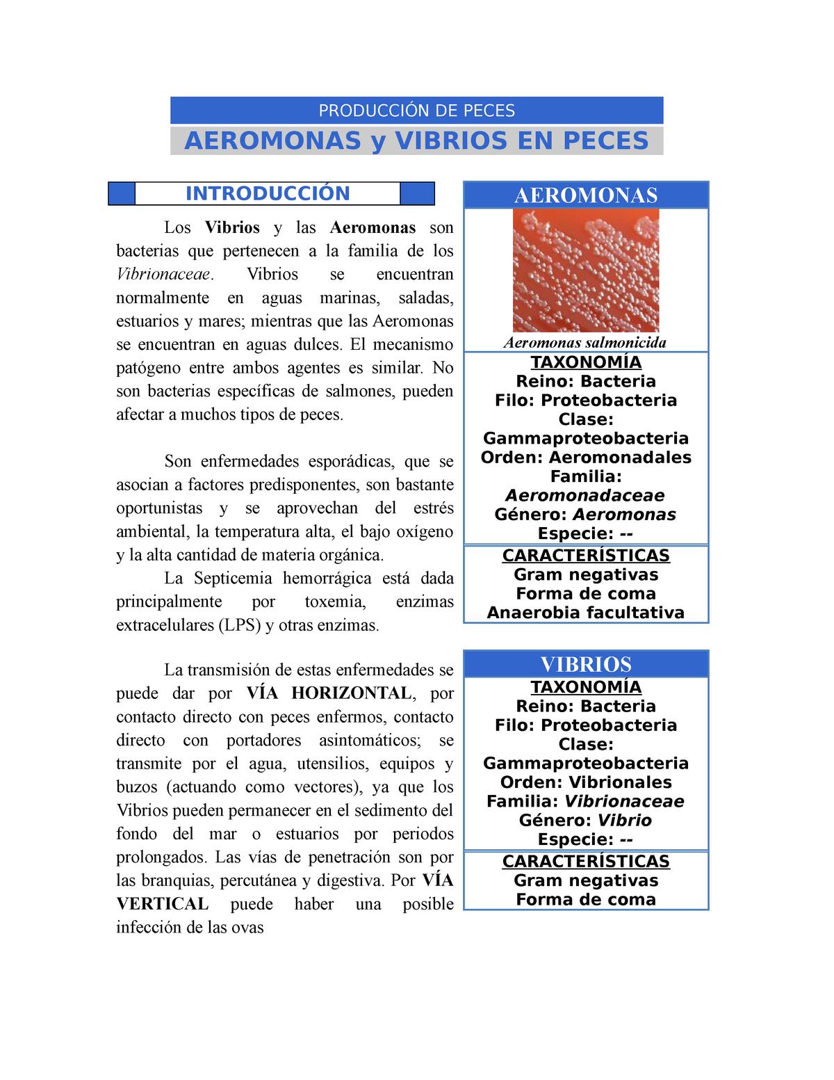 enfermedad hemorragica en peces