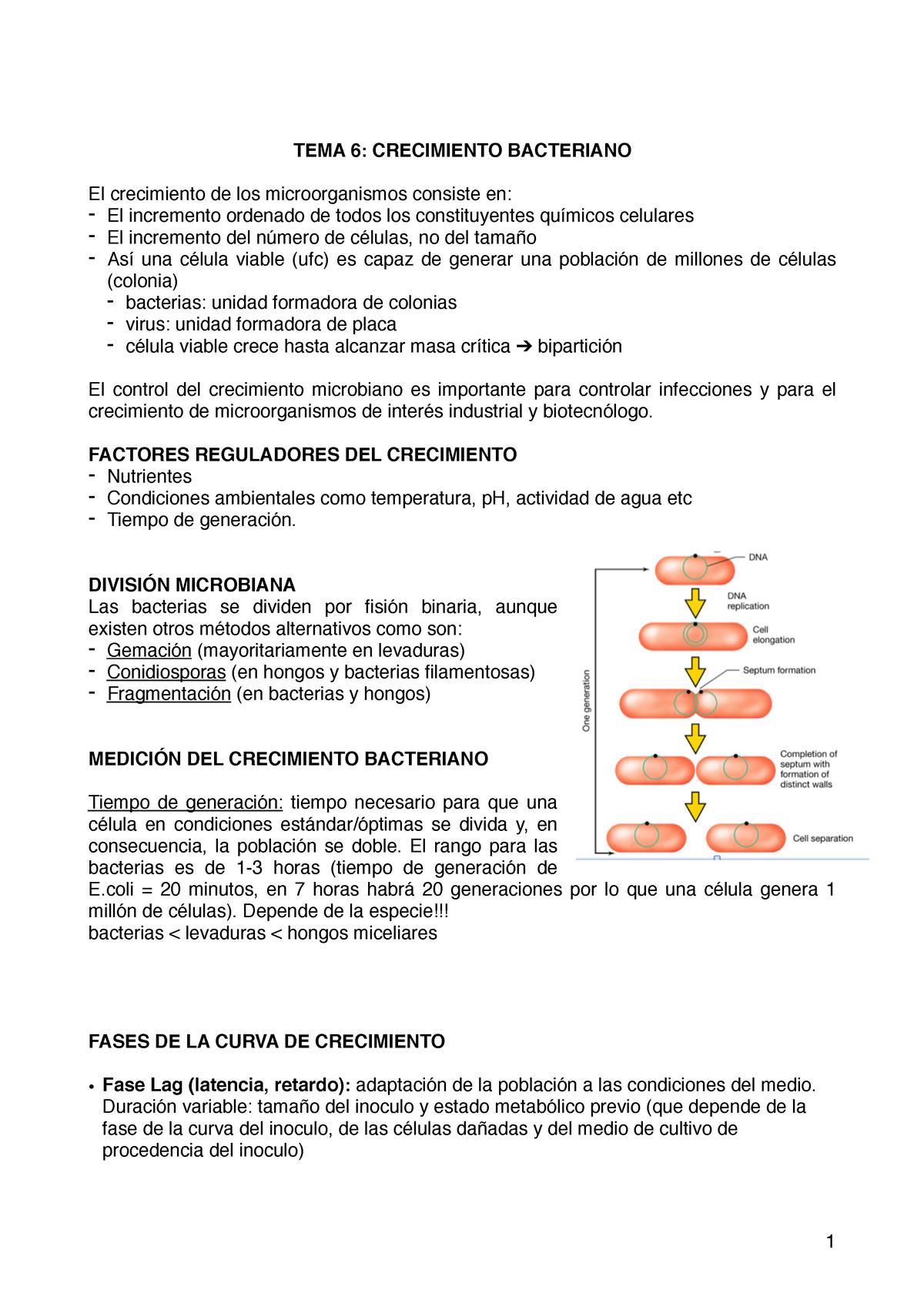 Hongos y bacterias industriales