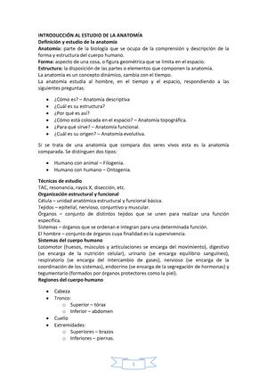 Apuntes anatomia - 651001: anatomía humana - StuDocu