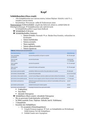 Kopf - Zusammenfassung des Themengebietes Kopf SoSe2016 - Allgemeine ...