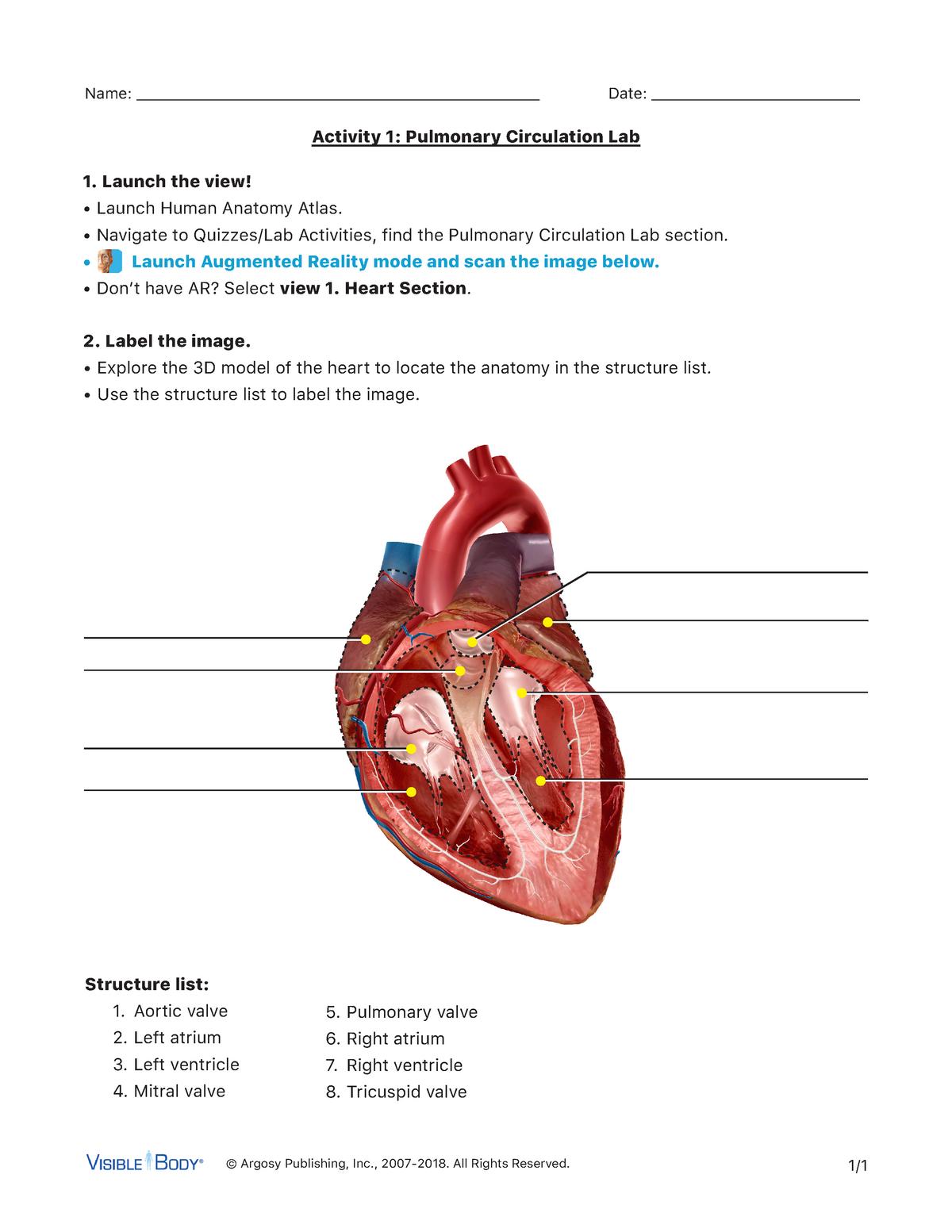 Pulmonary-lab-activity - Medicine MBBs - StuDocu