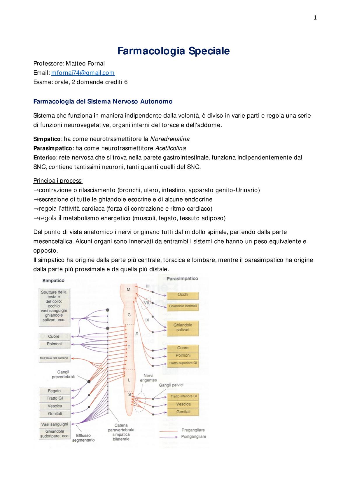 blocco urinario prostata e stressed out
