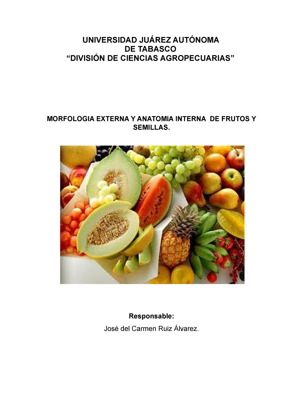 Morfología Interna Y Externa De Frutos Y Semillas Cf1407