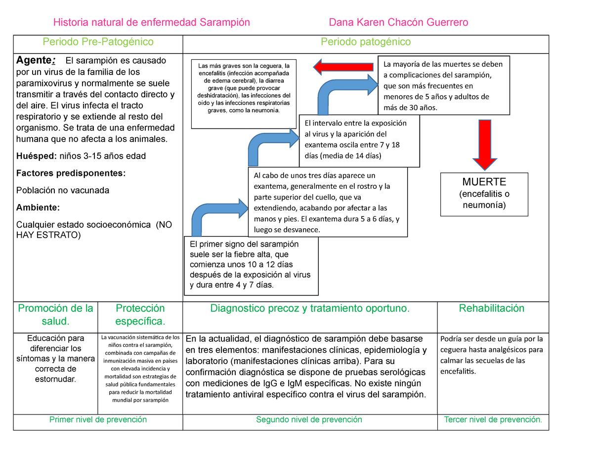 Historia Natural De Enfermedad Sarampion Microbiologia