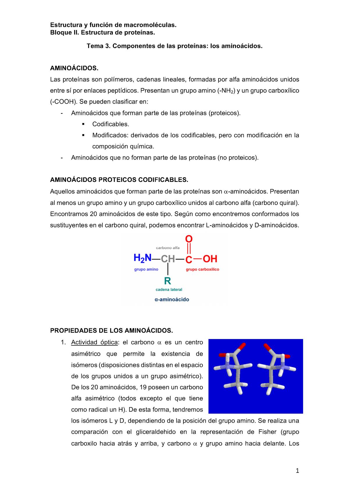 Tema 3 Apuntes De Clase 3 Estructura 21506 Uib Studocu
