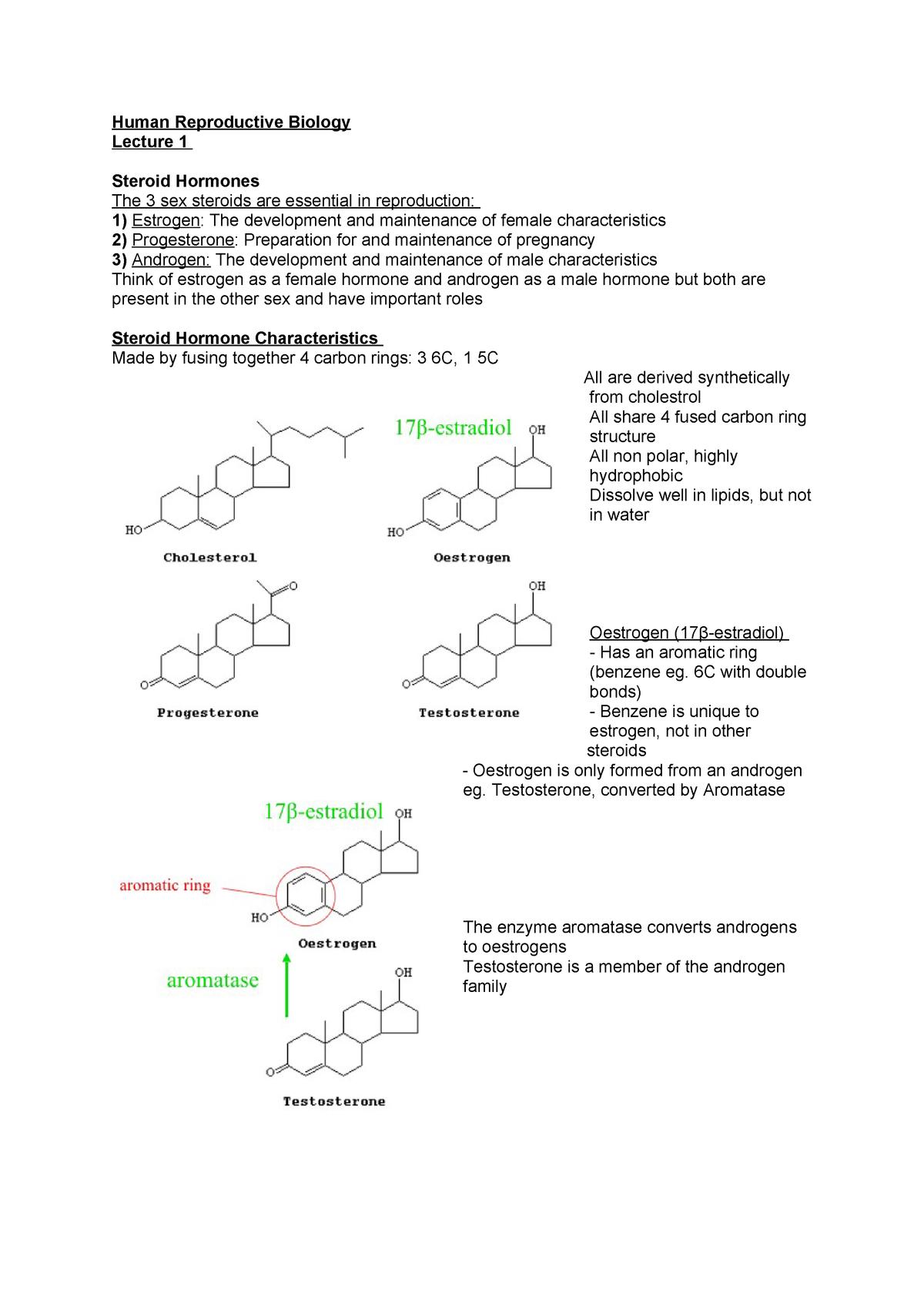 Human Reproductive Biology Lecture 1 - BIOL31561 : Human