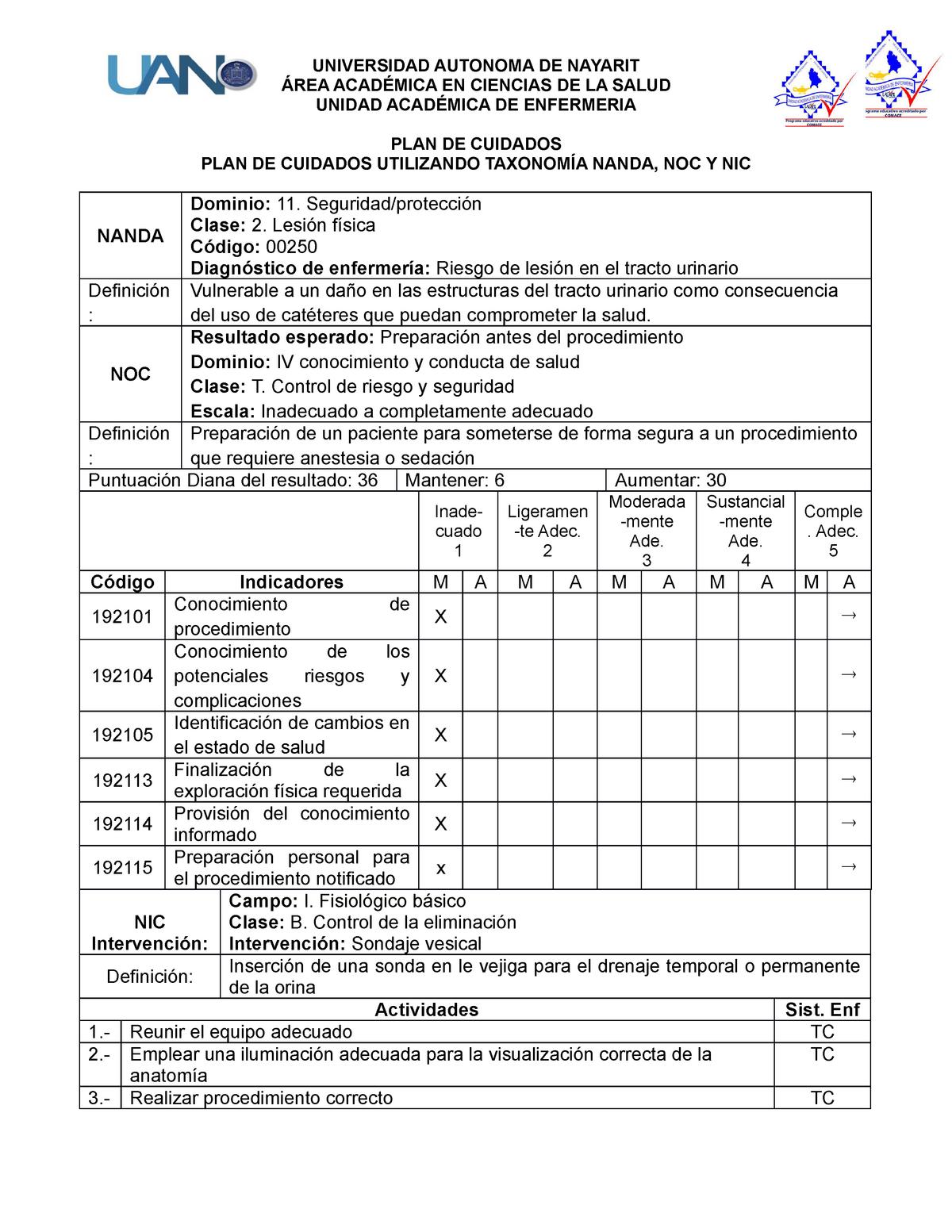 definicion sondaje vesical permanente
