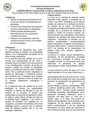 informe mitchell 2020 esteroides y diabetes