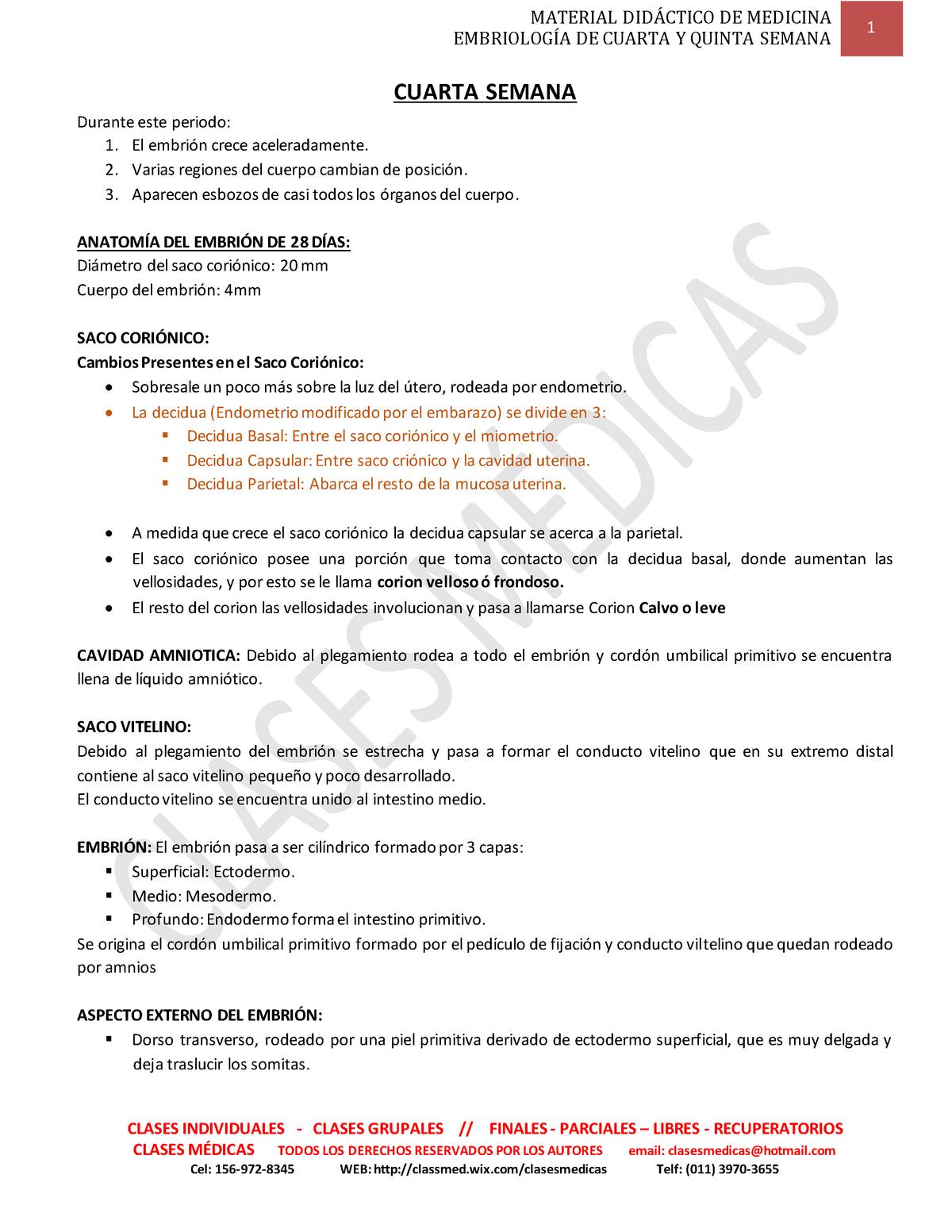 Cuarta y quinta semana - Histología - UBA - StuDocu