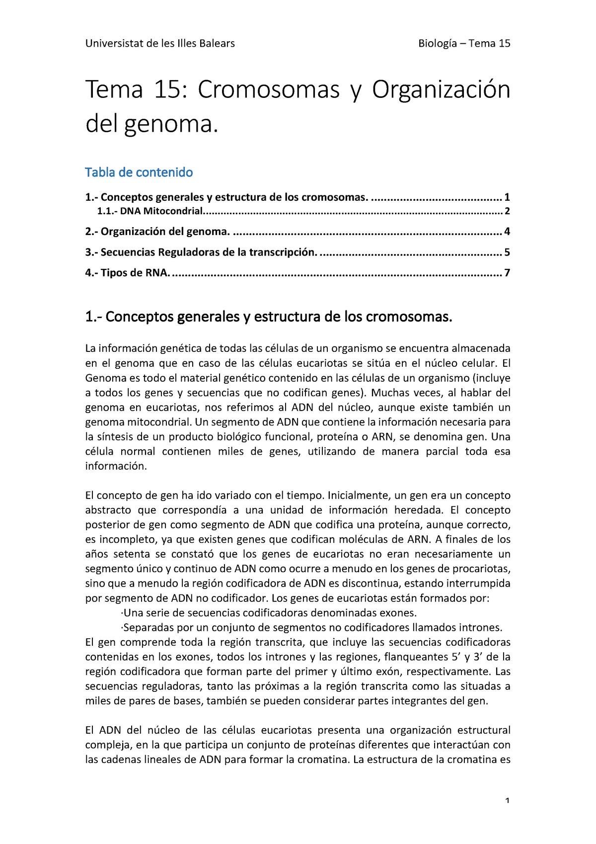 Tema 15 Cromosomas Y Organización Del Genoma Biología