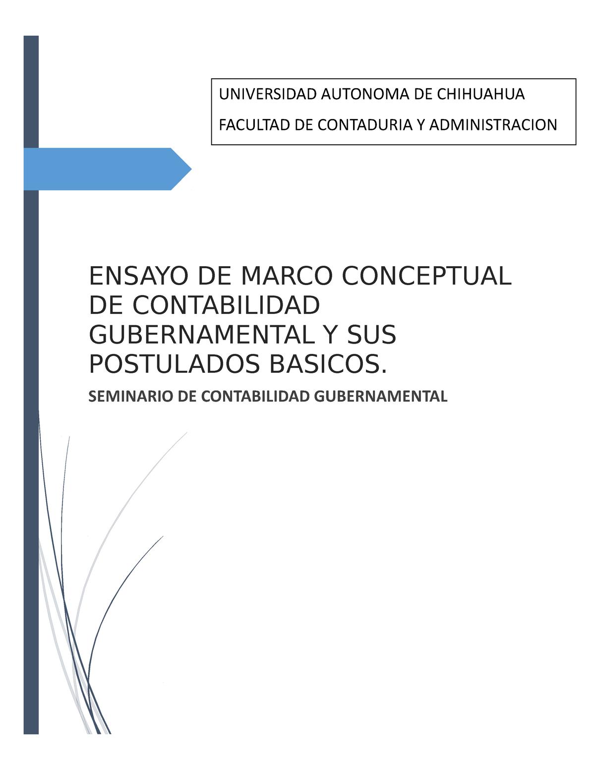 Ensayo De Marco Conceptual De Contabilidad Gubernamental Y