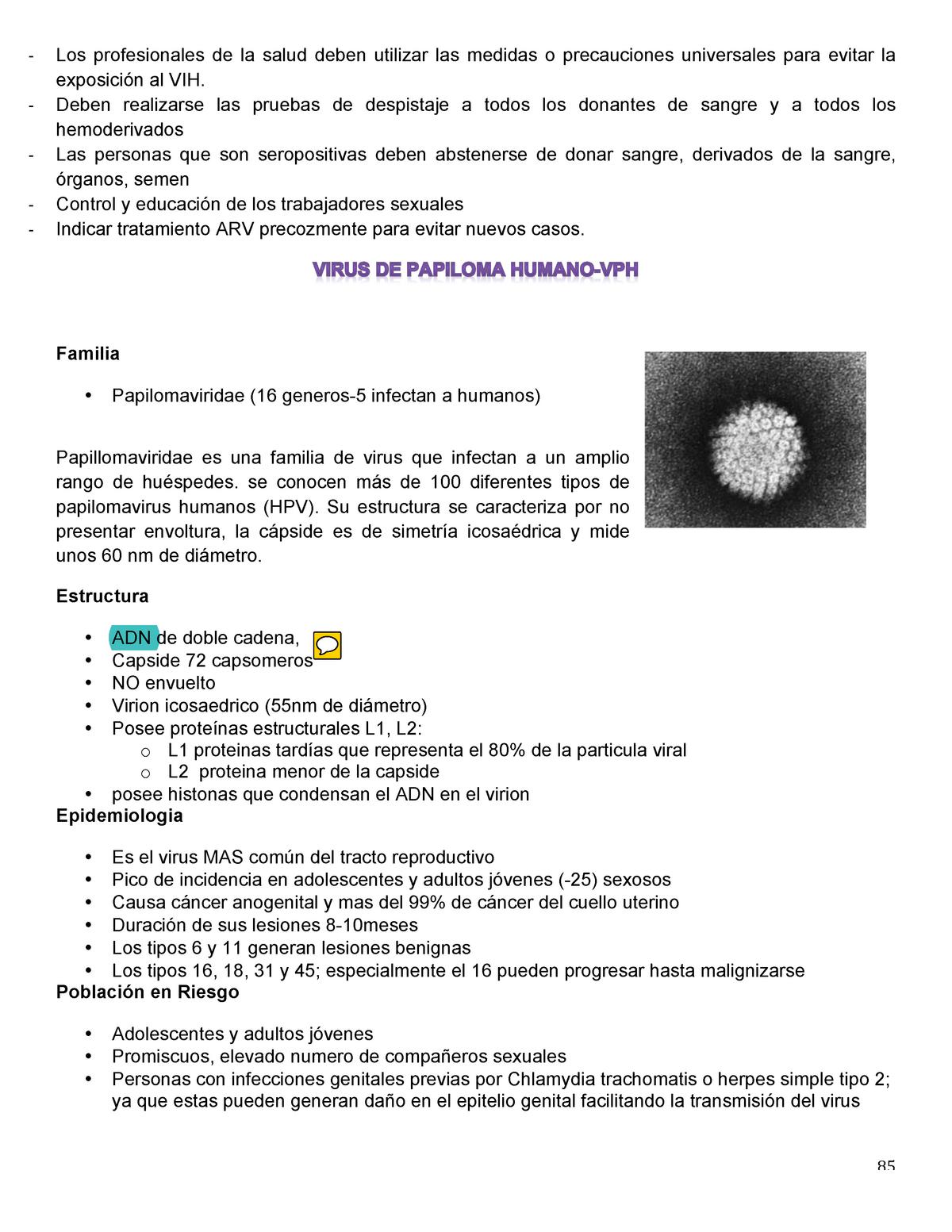 papillomaviridae tratamiento