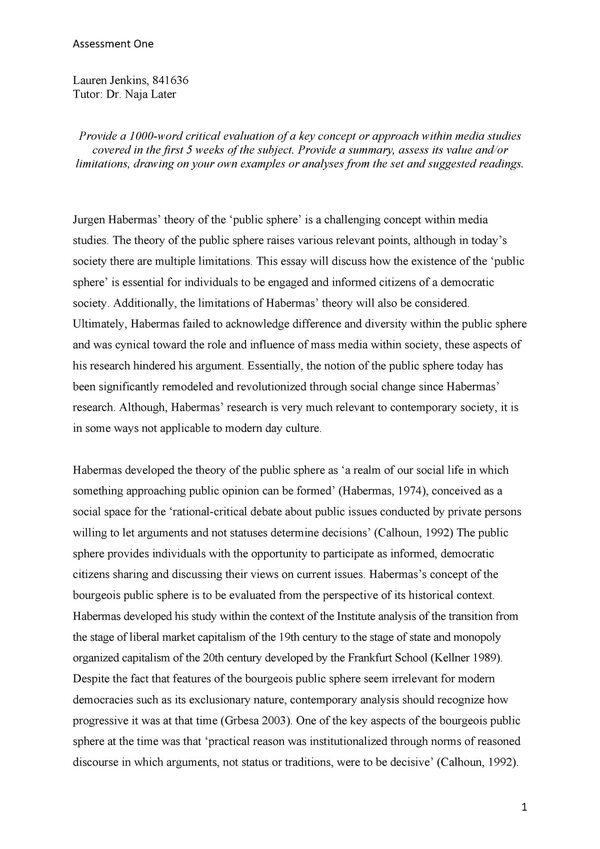 Evaluative essay on social media