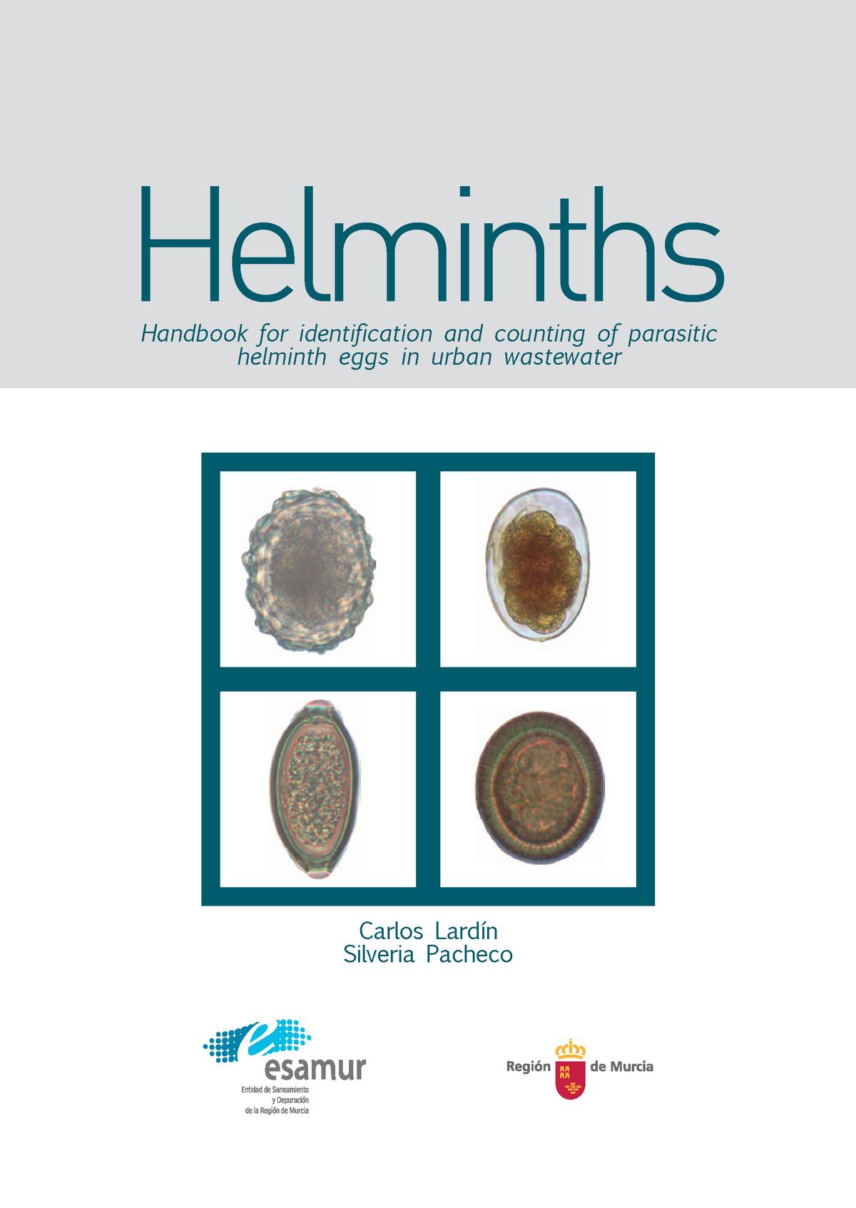 a helminthiasis szakaszai