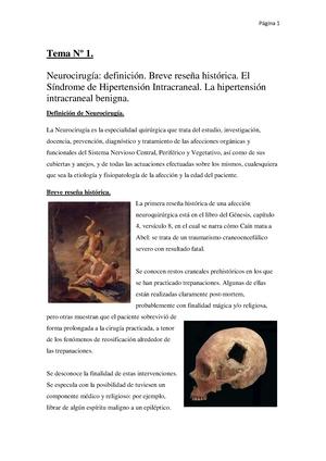 Neurocia Apuntes Completos - Apuntes completos. Año 2010 - 2011 ...