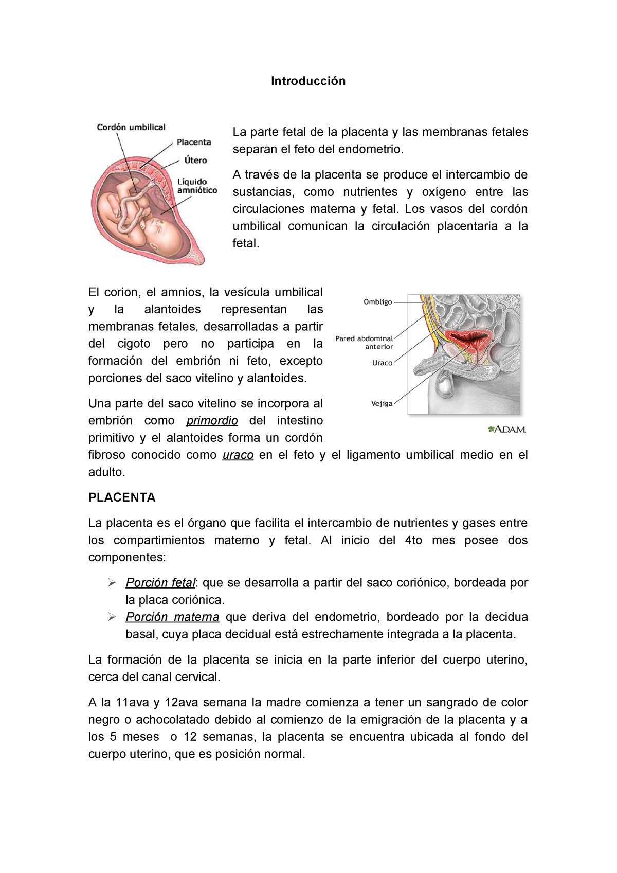 definición médica hidramnios de diabetes