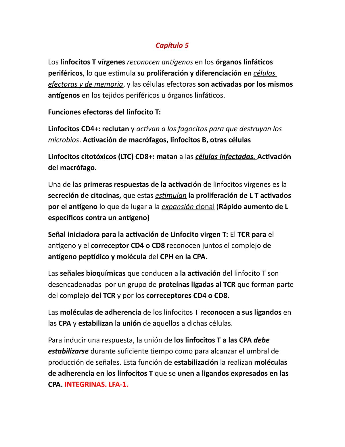 inmunologia celular y molecular abbas 9 edicion pdf descargar gratis