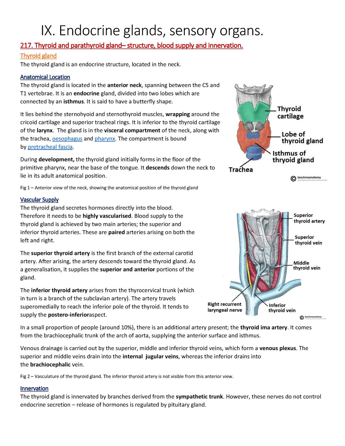 Ix Endocrine Glands Sensory Organs Done Anatomy Studocu