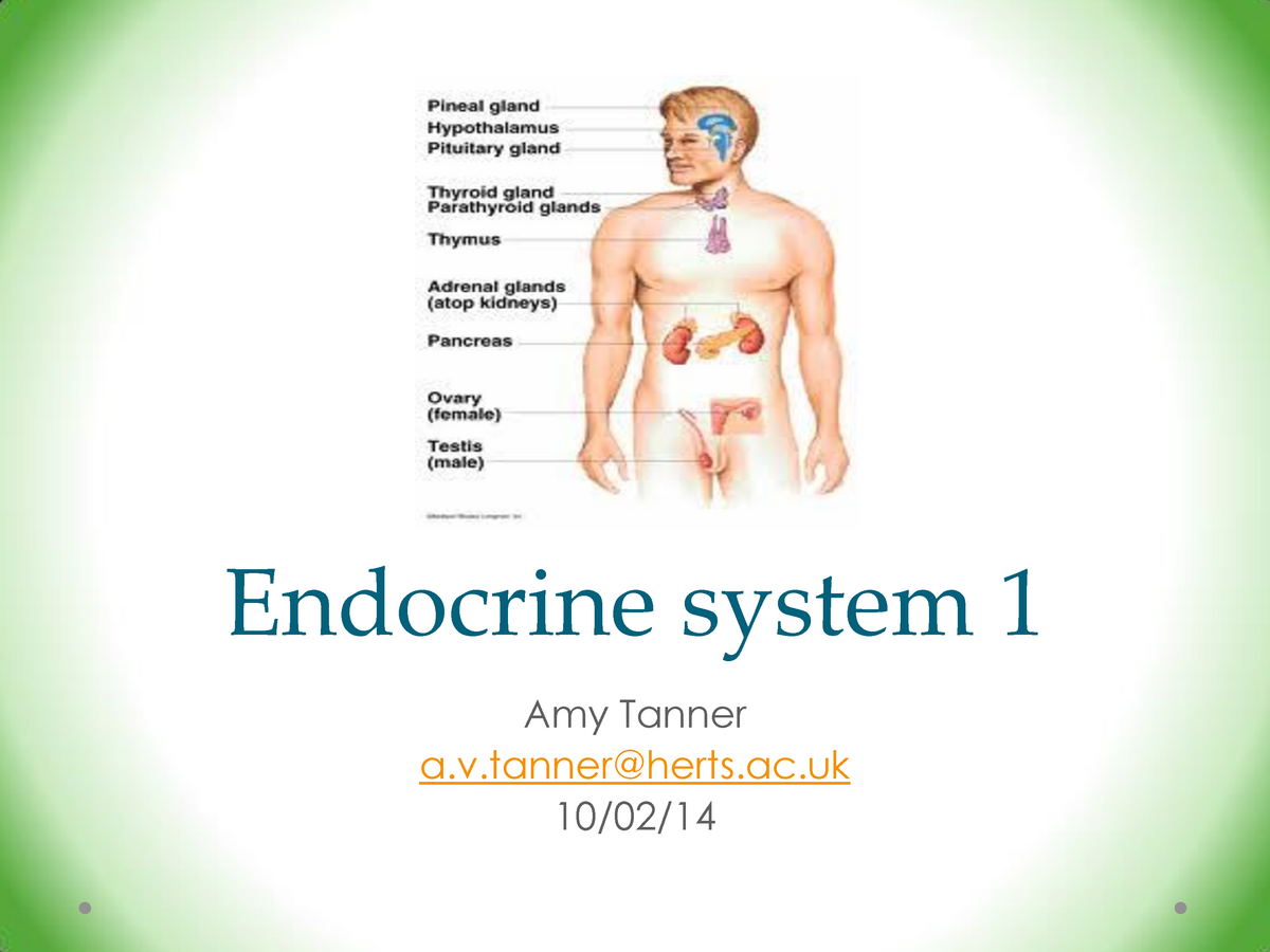 Lecture notes, lectures 1, 2 - endocrine system - SES1S: Sports and