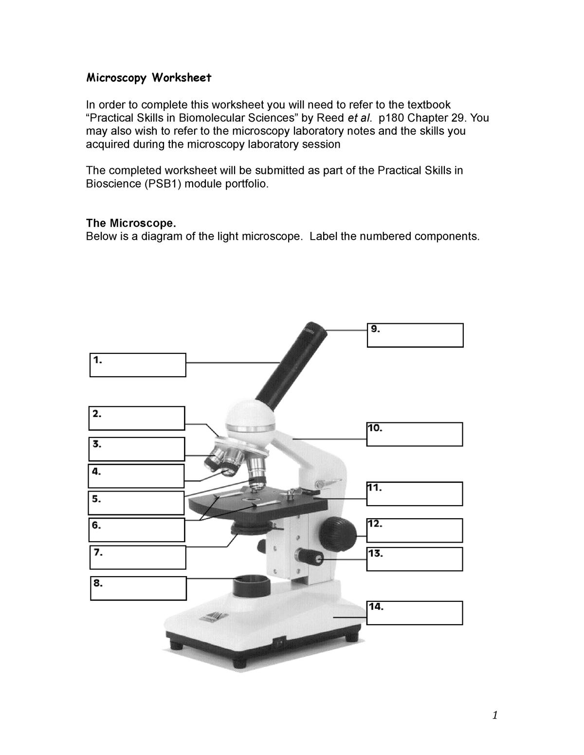 Psb Microscopy Worksheet Practical Skills In Biosciences 1 Studocu