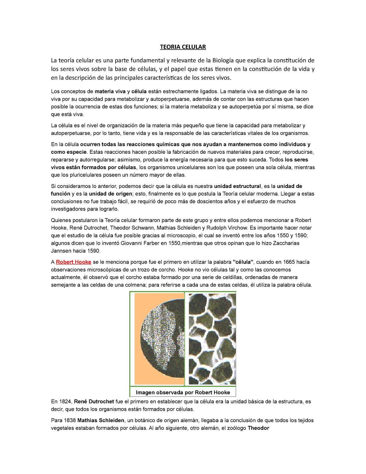Teoria Celular Botánica General Cb009 Universidad Rural