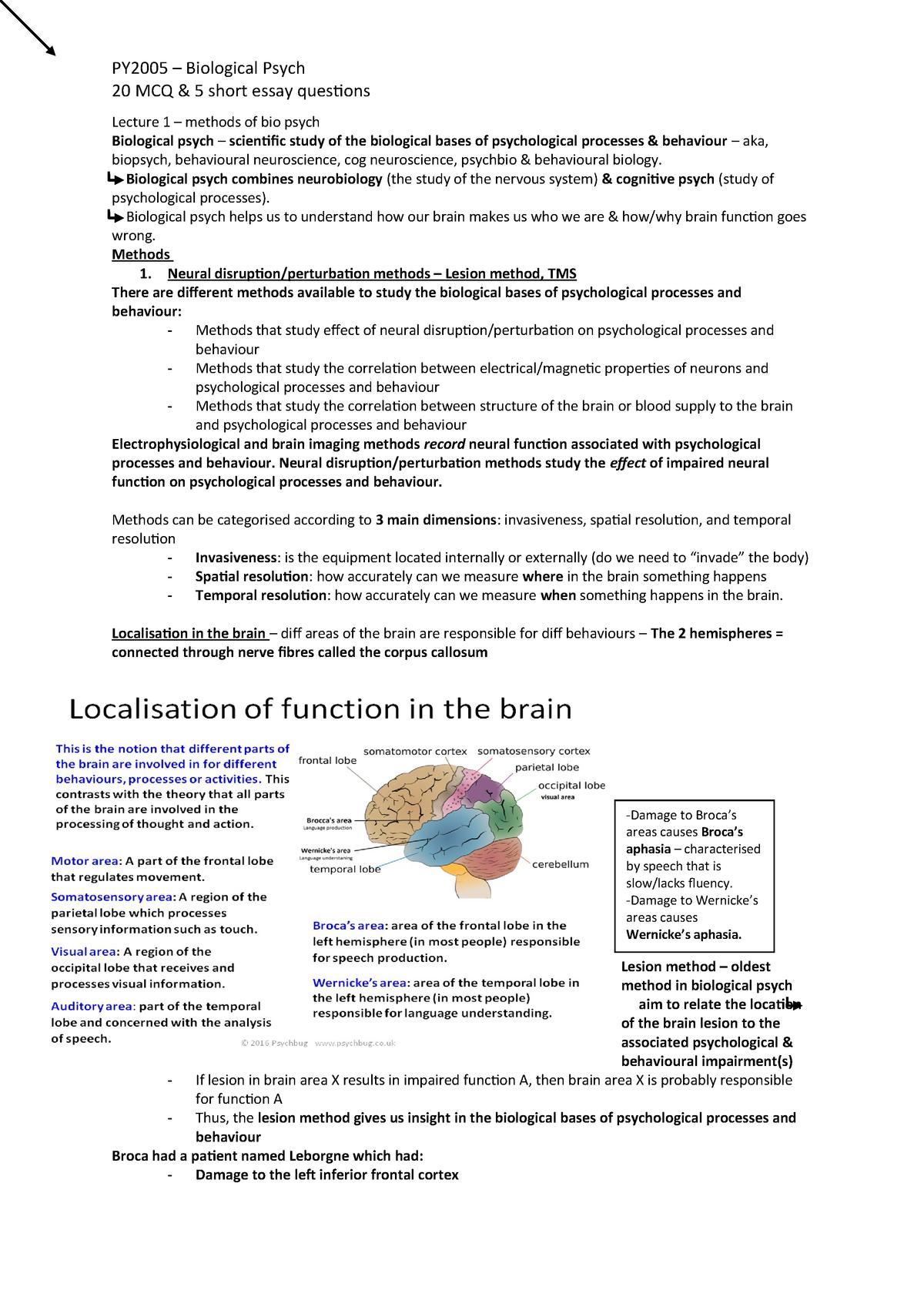 Biological psych - PY5700 - Brunel - StuDocu