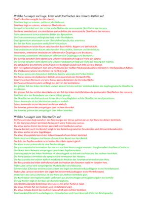 Kreislauf und Herz QUIZ Aussage - 376-0151-00L: Anatomy and ...