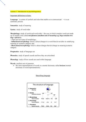 Lecture 1- Psycholinguistics - StuDocu