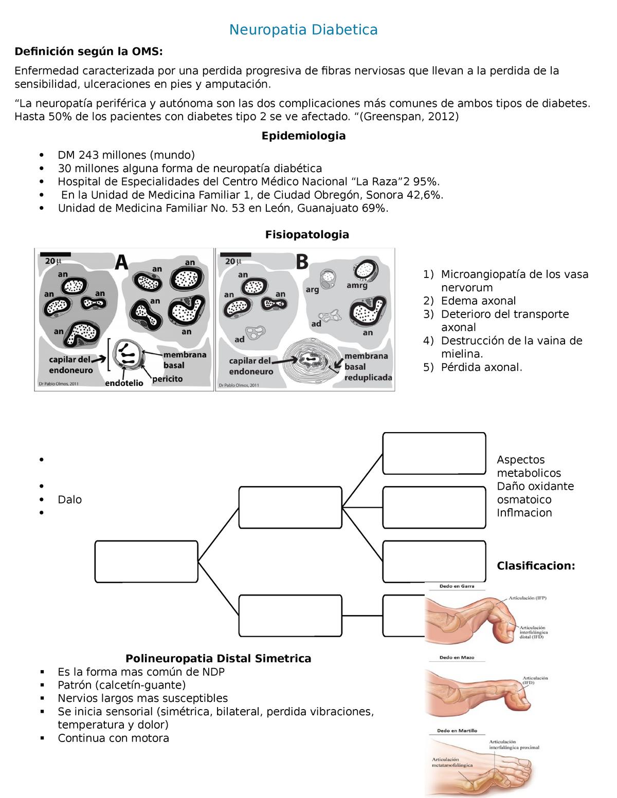 microangiopatía diabética y microangiopatía en diabetes