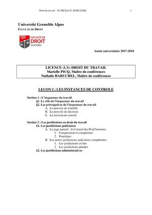 3ec5933d0ec Leçon 2 - Les instances de contrôle - Droit du travail - StuDocu