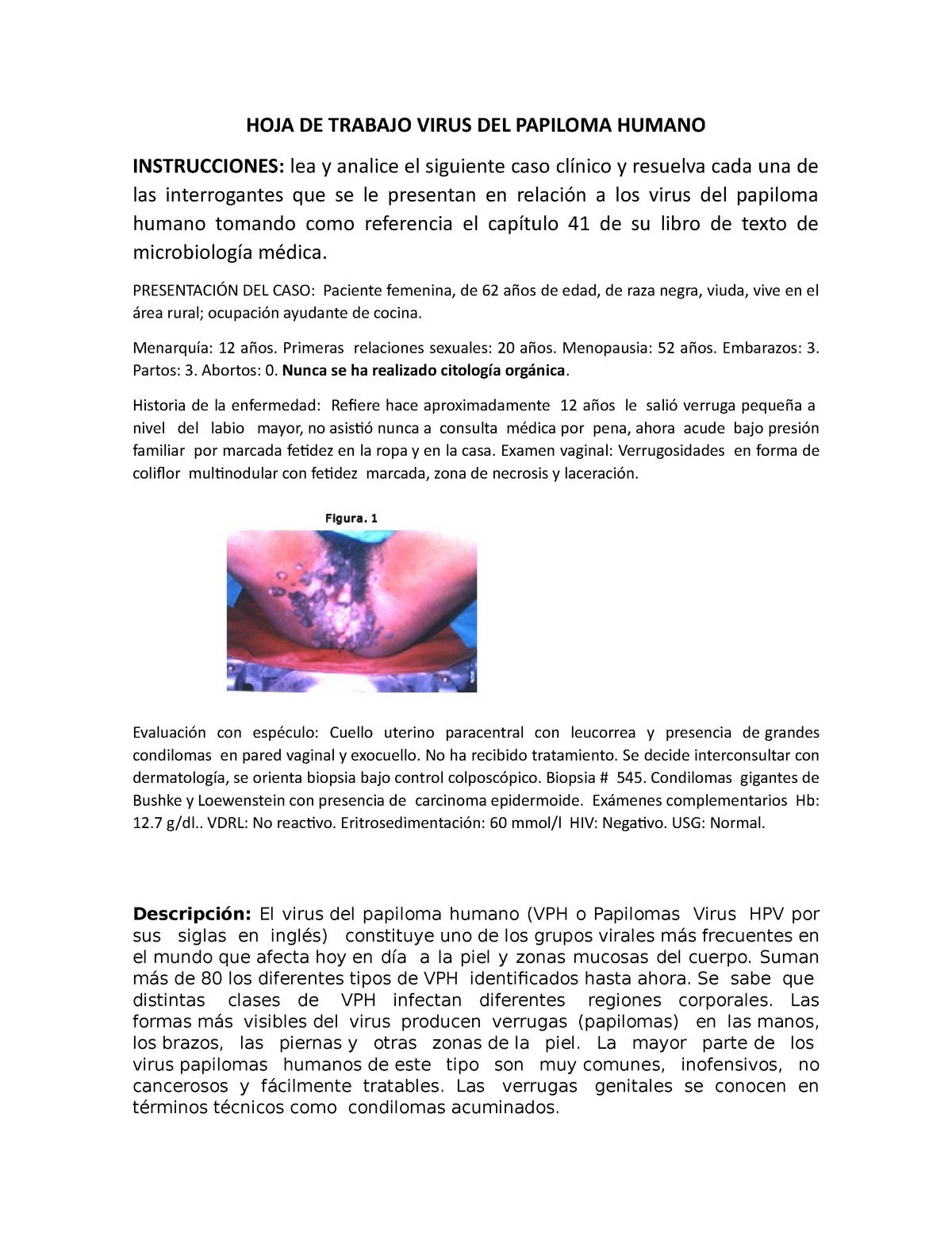 Papillomaviridae veterinaria, Papilom și prostatită Il papilloma virus umano