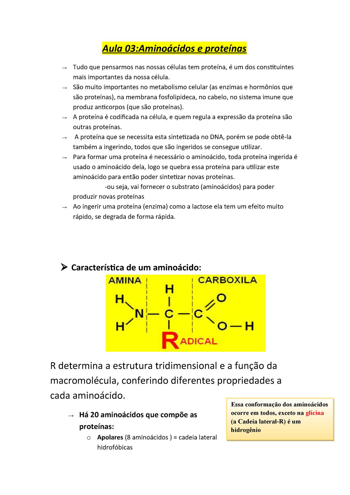 Aula 03 Resumo Processos Biológicos Unp Studocu