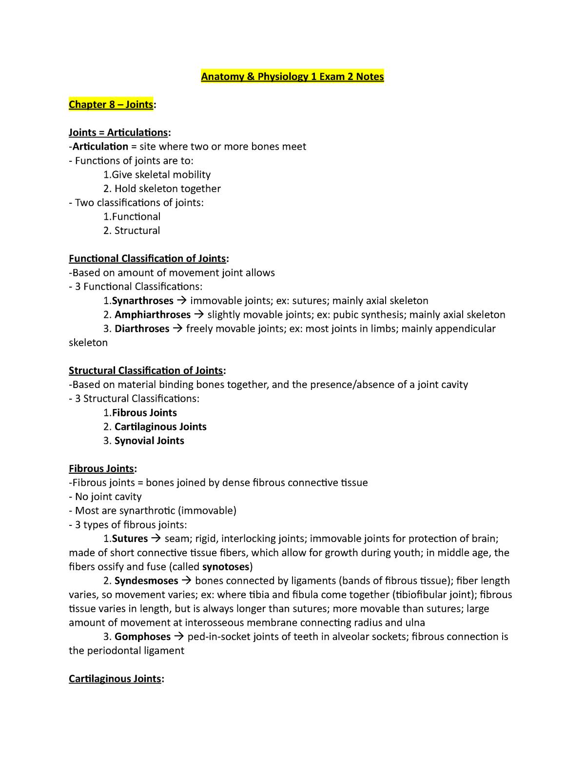 A&P 1 Exam 2 Notes - Professor Amatuli - BSC 2085C - StuDocu