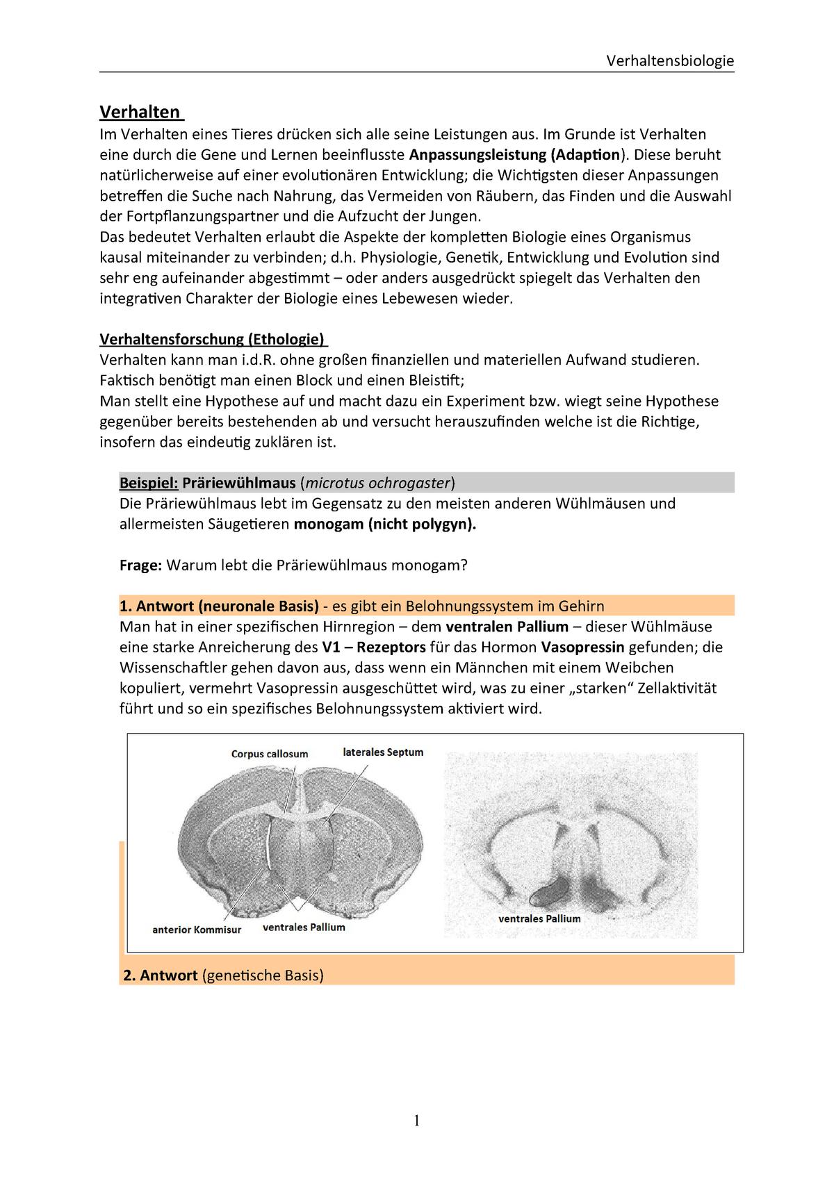 Verhalten - Teil-1 - Zusammenfassung + Mitschriften - StuDocu