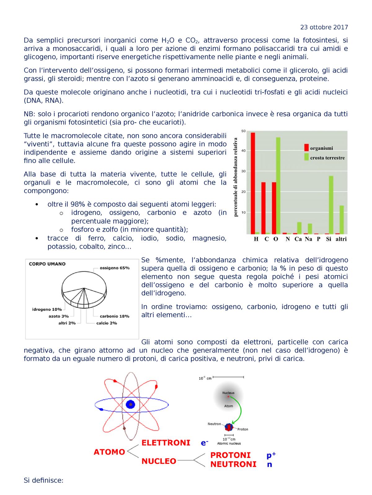 processo di metodo di datazione del carbonio