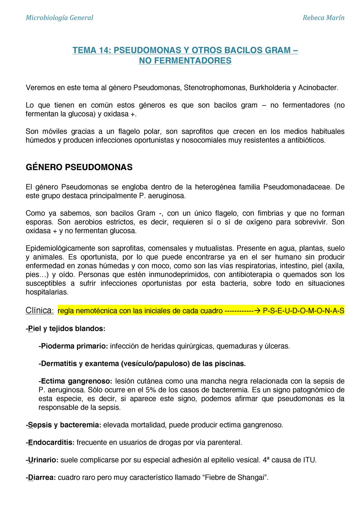 pseudomonas aeruginosa piel