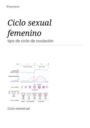 cuanto dura el ciclo menstrual femenino wikipedia