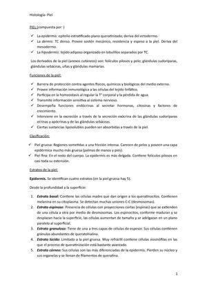 Piel - Piel fina y Gruesa - 30001520: Filosofía Y Medicina - StuDocu
