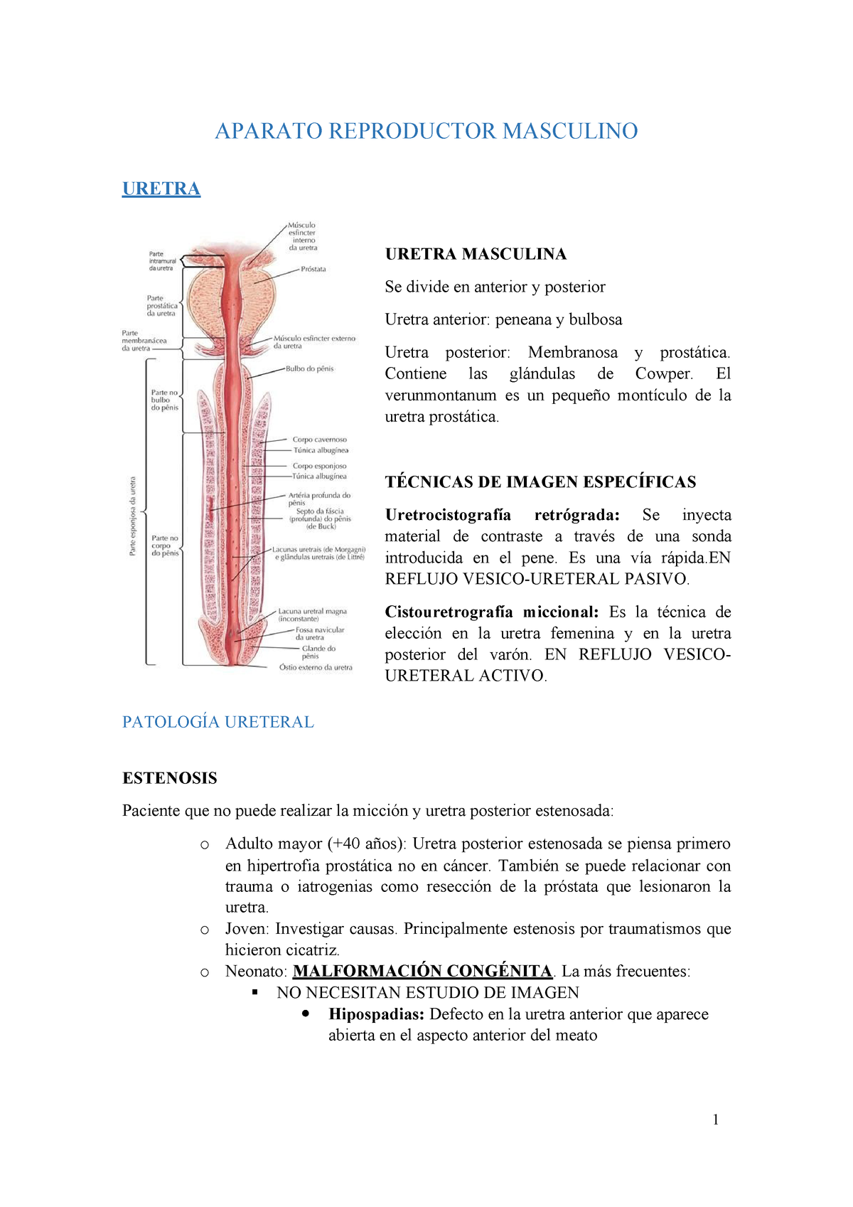 uretritis traumática curativa