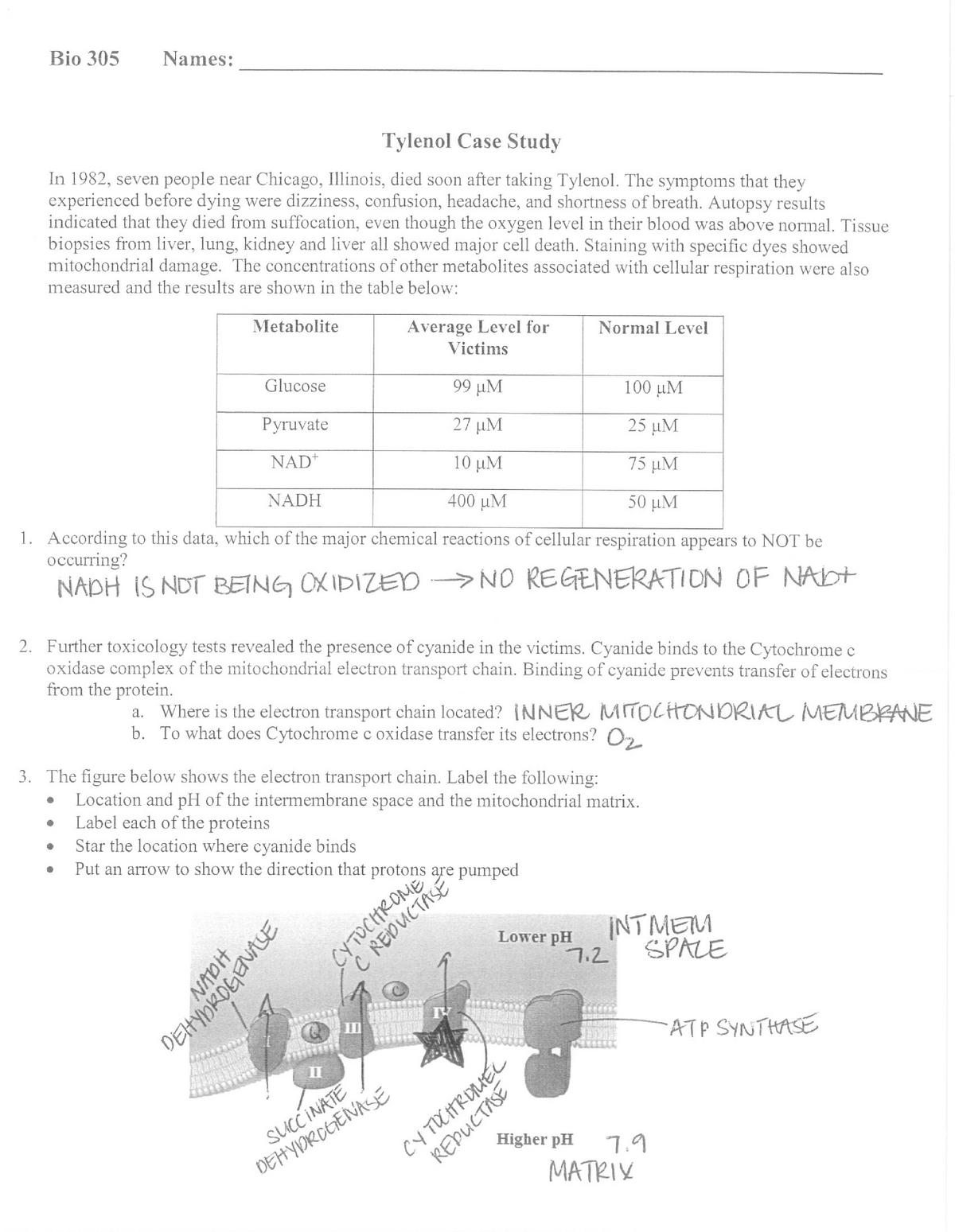 Case study format b.ed