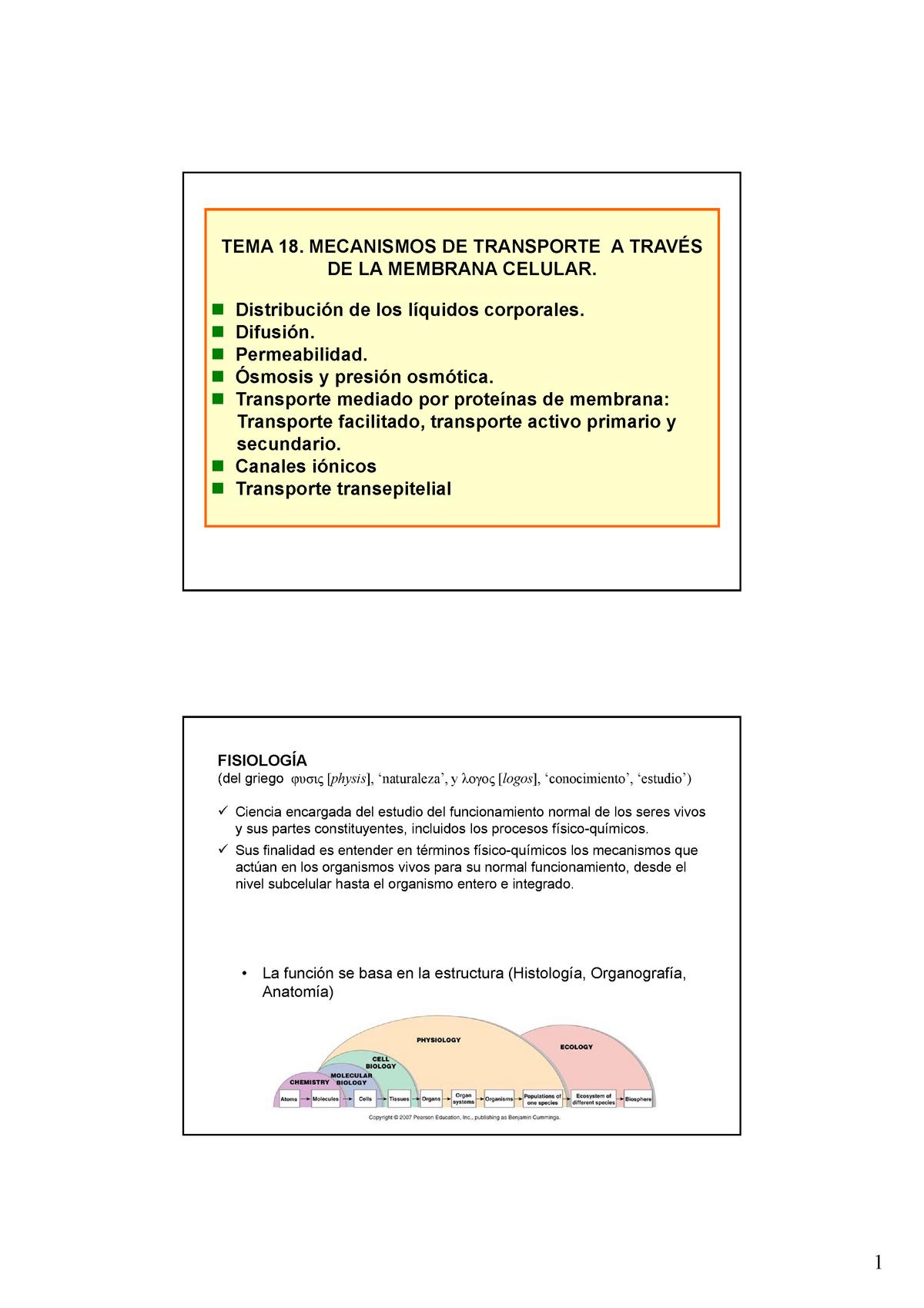 Tema18 Apuntes Tema 18 Biologia 45994 Uva Studocu