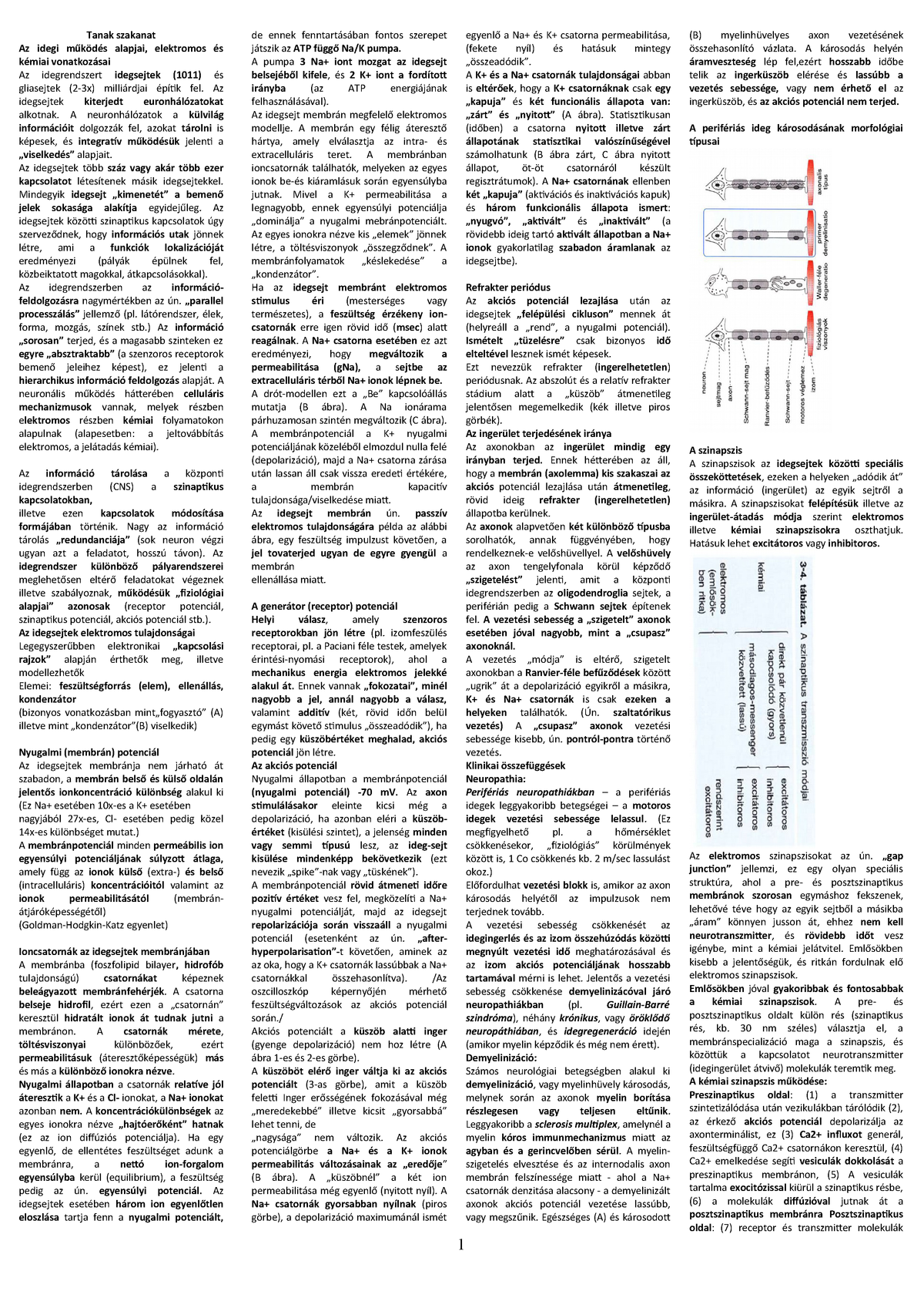 44aabcb789ae Tanak Szakanat hasab - Lecture notes each - NBTA-701: A tanulásban  akadályozottság szakanatómiája és orvos-biológiai ismeretei - StuDocu