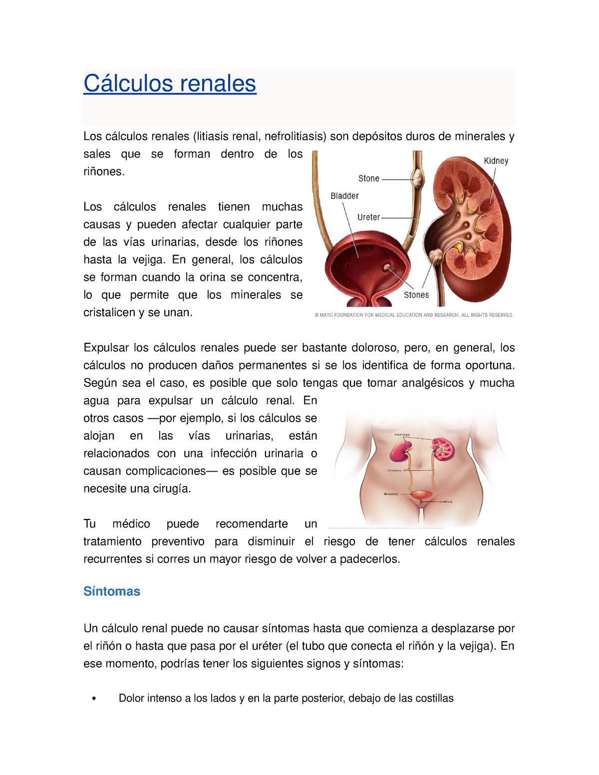 tubo desde el riñón hasta la vejiga