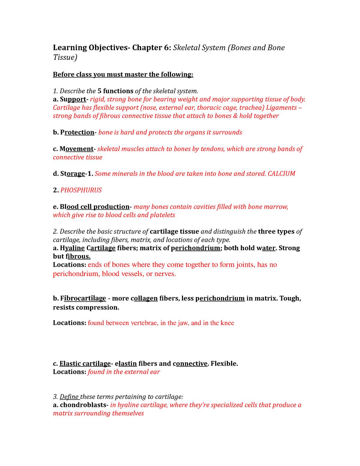 A P1 Skeletal System Biol2001c Anatomy And Physiology I Studocu