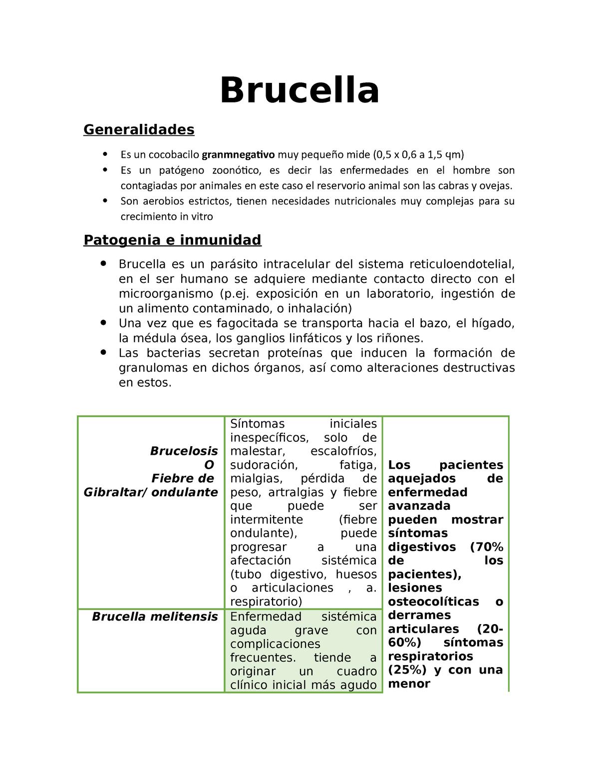 Brucella Microbiologia Y Parasitologia Uan Studocu
