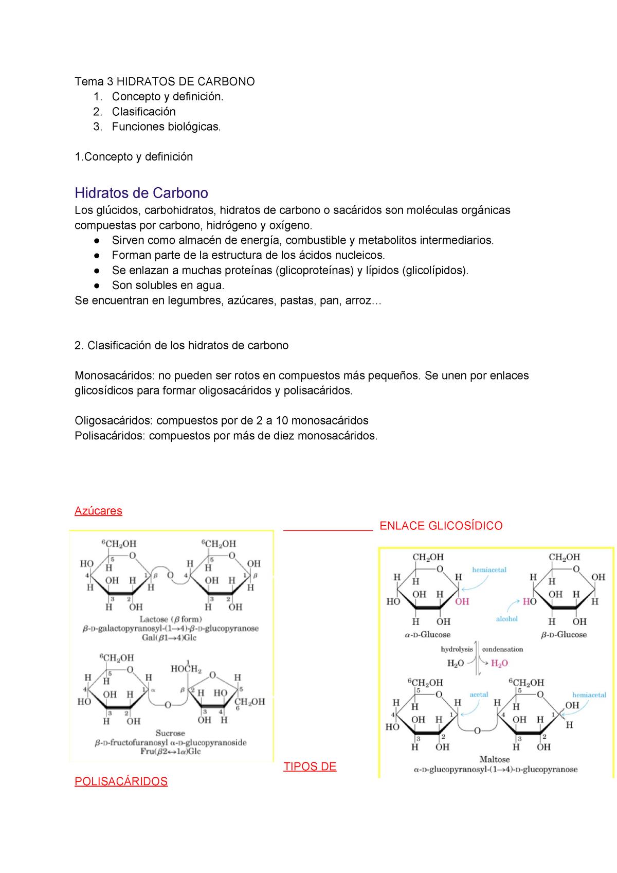 hidratos de carbono clasificacion