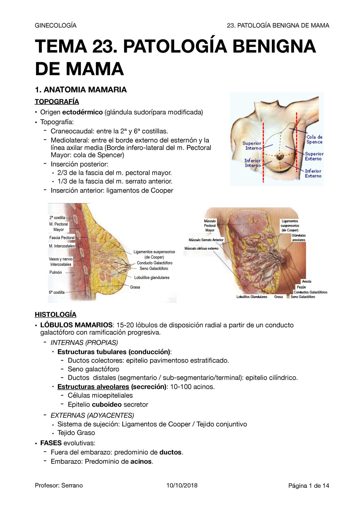 Mondor enfermedad mamaria