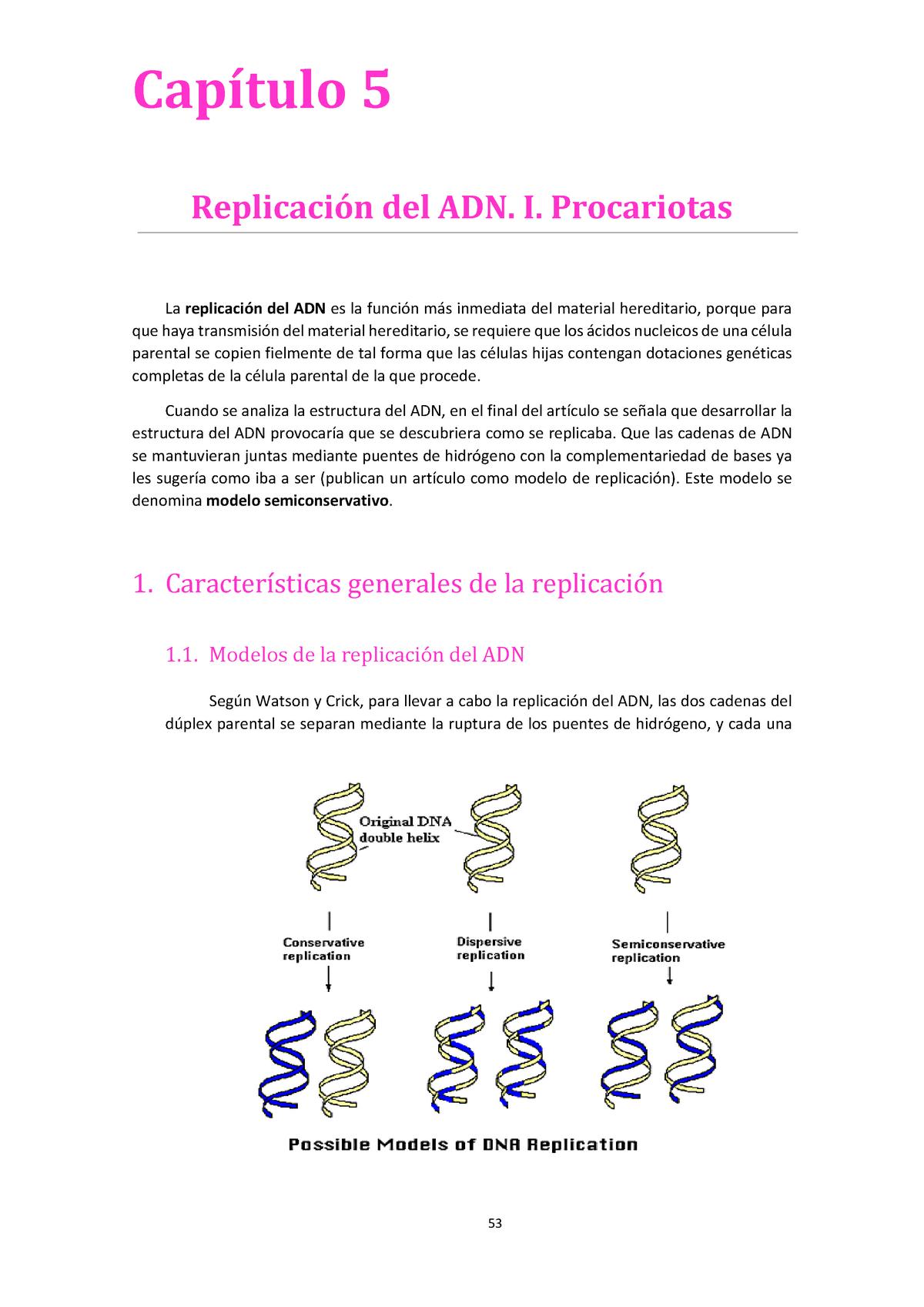 Tema 5 Replicación Del Adn I Procariotas Genética I